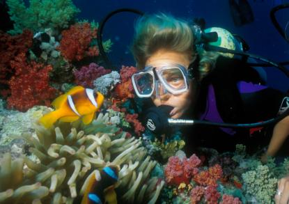 Diving in Fiji islands